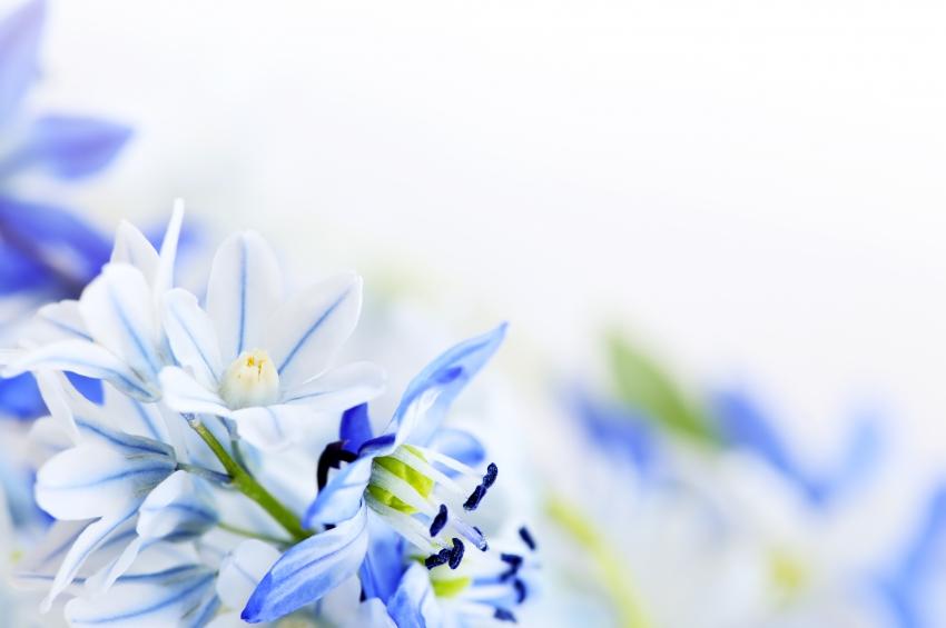 Psykoterapi och KBT – Verktyg till ett bättre liv